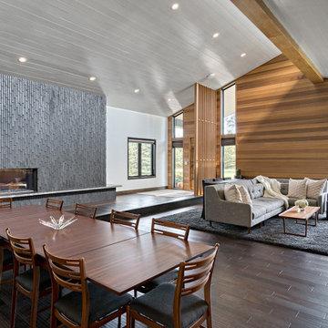 2020 Fall Remodelers Showcase:  Long Lake/Orono Midcentury Modern