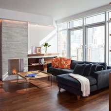Modern Living Room by Eisner Design LLC