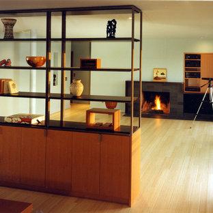 Esempio di un soggiorno moderno con camino classico e nessuna TV