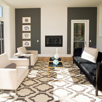Trendy living room photo in San Francisco with gray walls and a ribbon fireplace