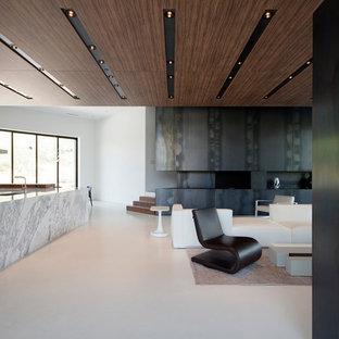 Idee per un grande soggiorno minimalista stile loft con pavimento in cemento, camino classico, cornice del camino in metallo, sala formale e pareti nere