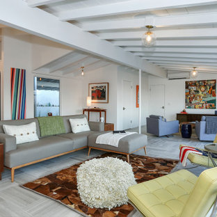 75 Beautiful Mid-Century Modern Living Room Pictures & Ideas - January, 2021 | Houzz
