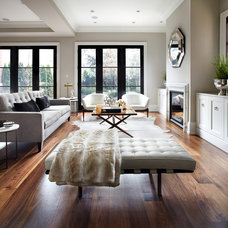 Transitional Living Room by Lisa Petrole Photography