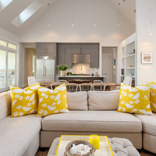 Transitional Living Room by Carrie Roby Interiors, LLC
