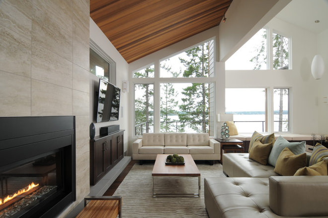 Contemporary Living Room by Signature Design & Cabinetry LLC