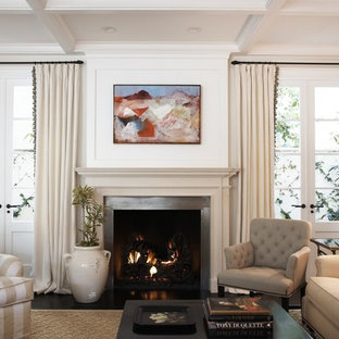 Living room - transitional living room idea in Los Angeles with a metal fireplace