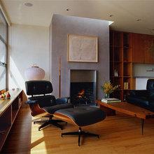 Amazing Eames