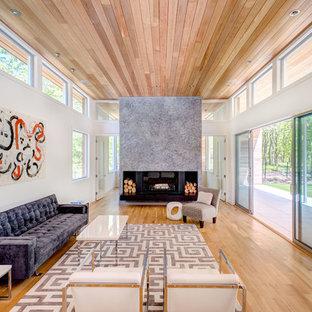 Modelo de salón para visitas abierto, minimalista, grande, sin televisor, con paredes blancas, suelo de madera clara, marco de chimenea de piedra, chimenea de doble cara y suelo beige