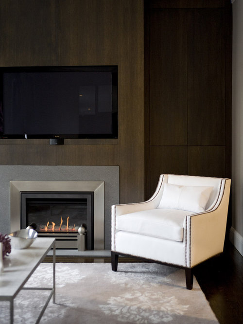 Best gas fireplace insert design ideas remodel pictures houzz - Contemporary fireplace insert for a warm living room ...