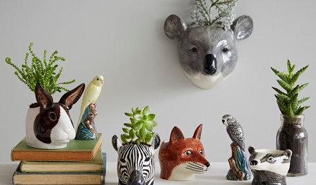 7 Idee per Creare un Meraviglioso Angolino Verde in Casa