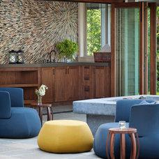 Contemporary Living Room by ANN SACKS