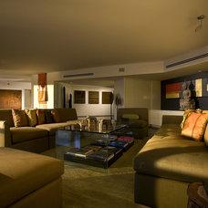 Contemporary Living Room by Craig Denis