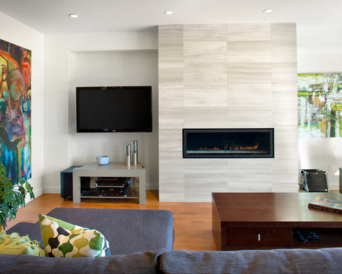 modern living room design ideas, remodels  photos  houzz,