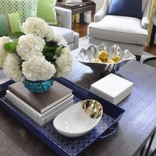 Transitional Living Room by Jennifer Reynolds - Jennifer Reynolds Interiors