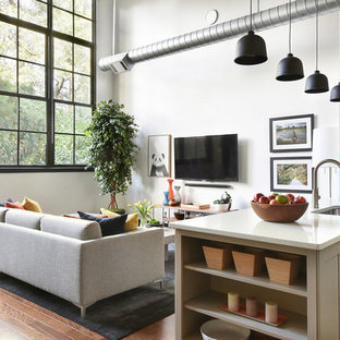 75 Beautiful Industrial Living Room Pictures U0026 Ideas | Houzz
