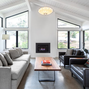 Amazing 75 Beautiful Living Room Pictures Ideas Houzz Squirreltailoven Fun Painted Chair Ideas Images Squirreltailovenorg