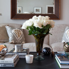 Contemporary Living Room by Elizabeth Reich