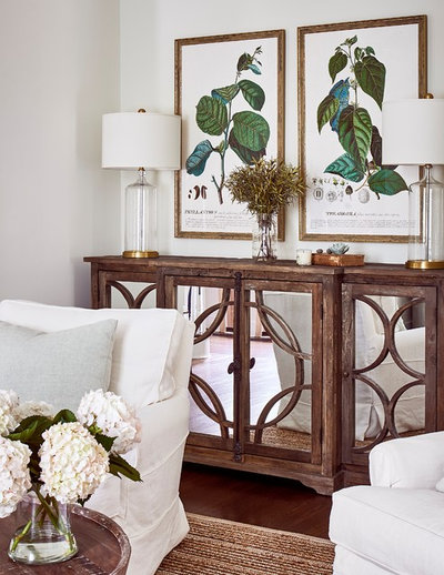 Transitional Living Room by Ally Whalen Design