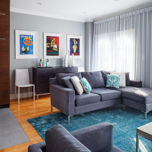 Grey And Teal Living Room Ideas Photos Houzzphoto Of A Medium Sized Traditional Open Plan