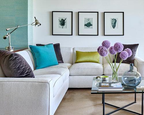 Contemporary Glam Living Home Design Ideas amp Photos