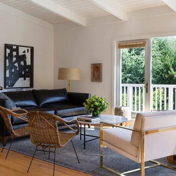 Belvedere (Marin) Contemporary Living Room