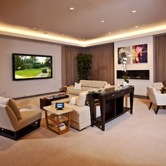 contemporary living room by DSI Entertainment Systems