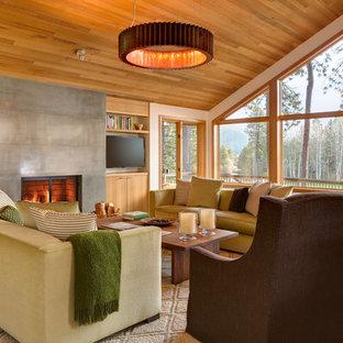 ポートランドのトランジショナルスタイルのおしゃれなリビング (コンクリートの暖炉まわり) の写真