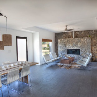 Living room - southwestern porcelain floor living room idea in Phoenix with a stone fireplace