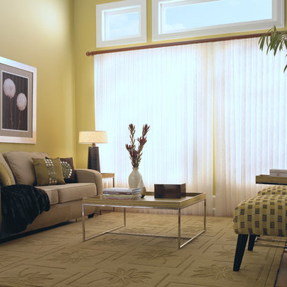 Large Window Shades Home Design Ideas Pictures Remodel