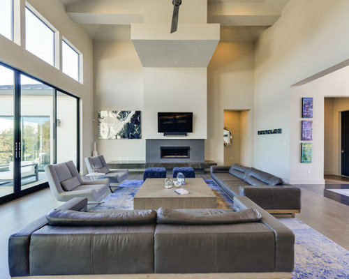 Inspiration For A Contemporary Living Room Remodel In Austin With Gray  Walls, A Standard Fireplace