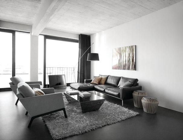 Modern Living Room by BoConcept US