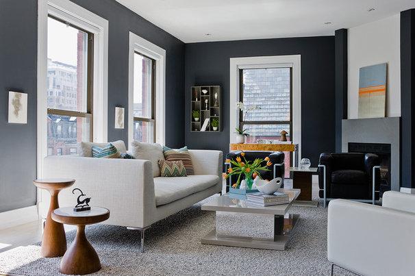 Contemporary Living Room by Ana Donohue Interiors