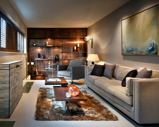 Narrow Living Room Houzz
