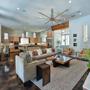Inspiration for a contemporary concrete floor and brown floor living room remodel in Austin