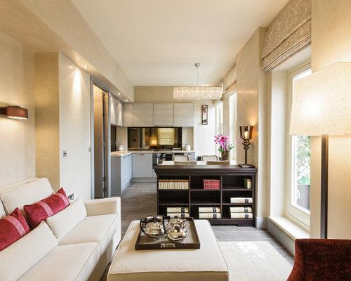 Narrow Living Room Ideas and Photos Houzz