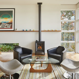 75 Most Por Midcentury Living Room With A Wood Burning Stove Design Ideas For 2019 Stylish Remodeling