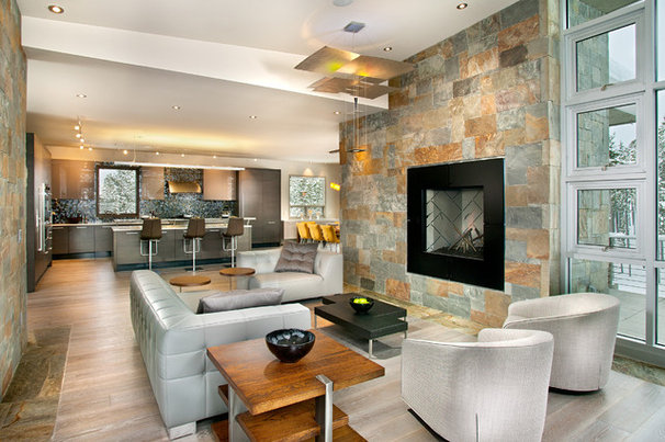 Contemporary Living Room by New Mood Design LLC
