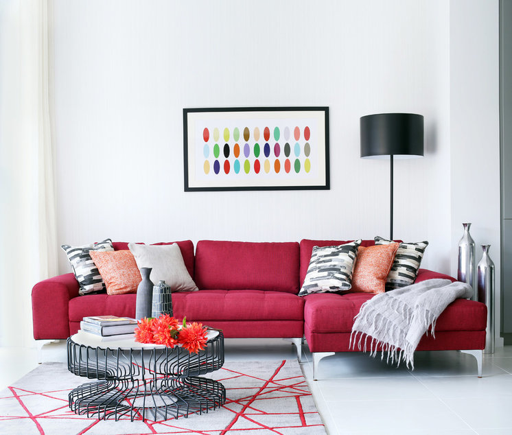 Contemporary Living Room by Alex Maguire Photography