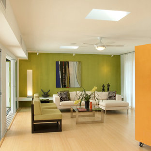 Living room - contemporary open concept living room idea in Miami with green walls