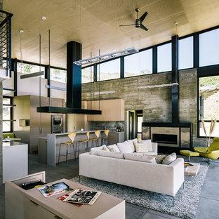 サンフランシスコの中サイズのコンテンポラリースタイルのおしゃれなLDK (フォーマル、コンクリートの床、横長型暖炉、テレビなし) の写真