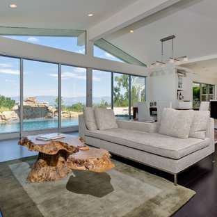 Mid-sized trendy formal and open concept dark wood floor living room photo in Los Angeles with white walls and a ribbon fireplace