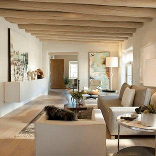 Ispirazione per un soggiorno american style di medie dimensioni e chiuso con pareti bianche, parquet chiaro, camino ad angolo e cornice del camino in intonaco