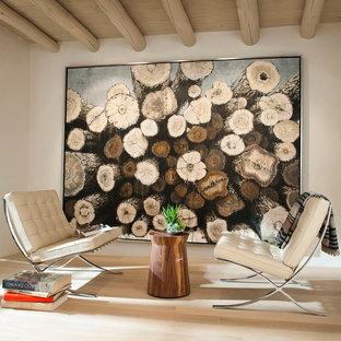 アルバカーキの中サイズのサンタフェスタイルのおしゃれな独立型リビング (白い壁、淡色無垢フローリング、コーナー設置型暖炉、漆喰の暖炉まわり) の写真