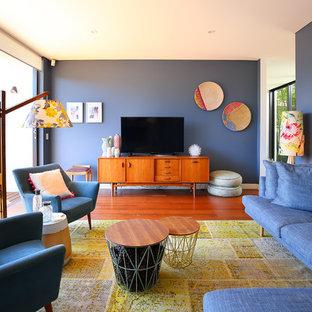 Idéer för att renovera ett retro separat vardagsrum, med blå väggar, mellanmörkt trägolv och en fristående TV