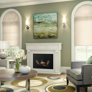 Example of a mid-sized classic formal and enclosed living room design in Other with green walls, a standard fireplace, a plaster fireplace and a wall-mounted tv
