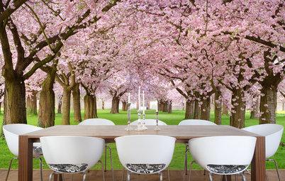 Shop Houzz: Celebrate Spring With Cherry Blossom Decor
