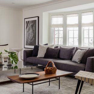 Living room - large transitional formal and enclosed gray floor and medium tone wood floor living room idea in Boston with white walls and no tv