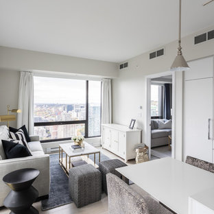 Example Of A Small Minimalist Living Room Design In Montreal