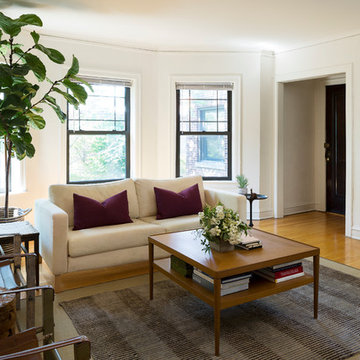 Chicago-Transitional-Living Room