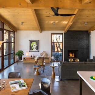 ロサンゼルスの中サイズのミッドセンチュリースタイルのおしゃれなLDK (白い壁、コンクリートの床、標準型暖炉、レンガの暖炉まわり) の写真